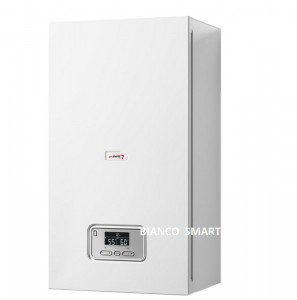 Imagine Centrala electrica  Protherm Ray 18 kw
